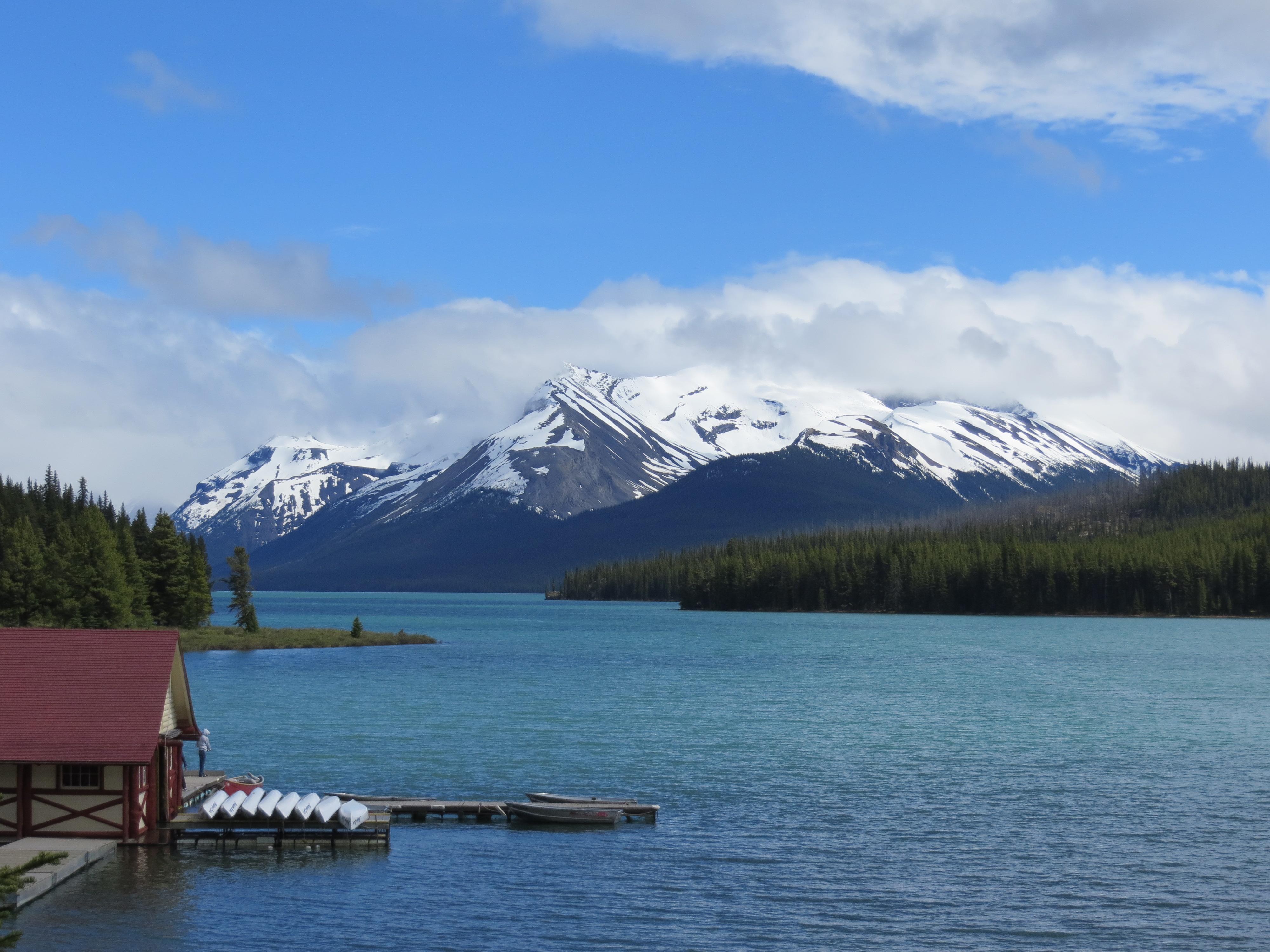 beste aansluiting site Calgary beste type foto voor online dating