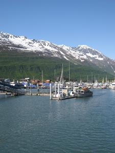 Valdez harbor in de zon