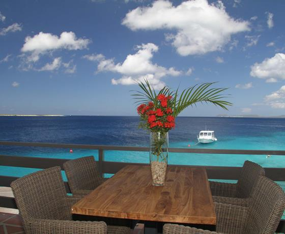 buddy dive resort bonaire restaurant