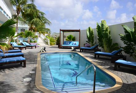 dolphin suites curacao zwembad